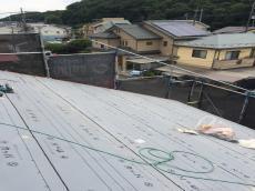 20190622yanekabaao-kurizzi000009.JPG