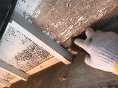 20180826_所沢市若狭 外壁、雨戸塗装・ベランダ床、雨樋交換16.JPG