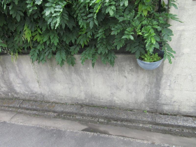 所沢市 屋根塗装 外壁塗装 施工前 (2).JPG